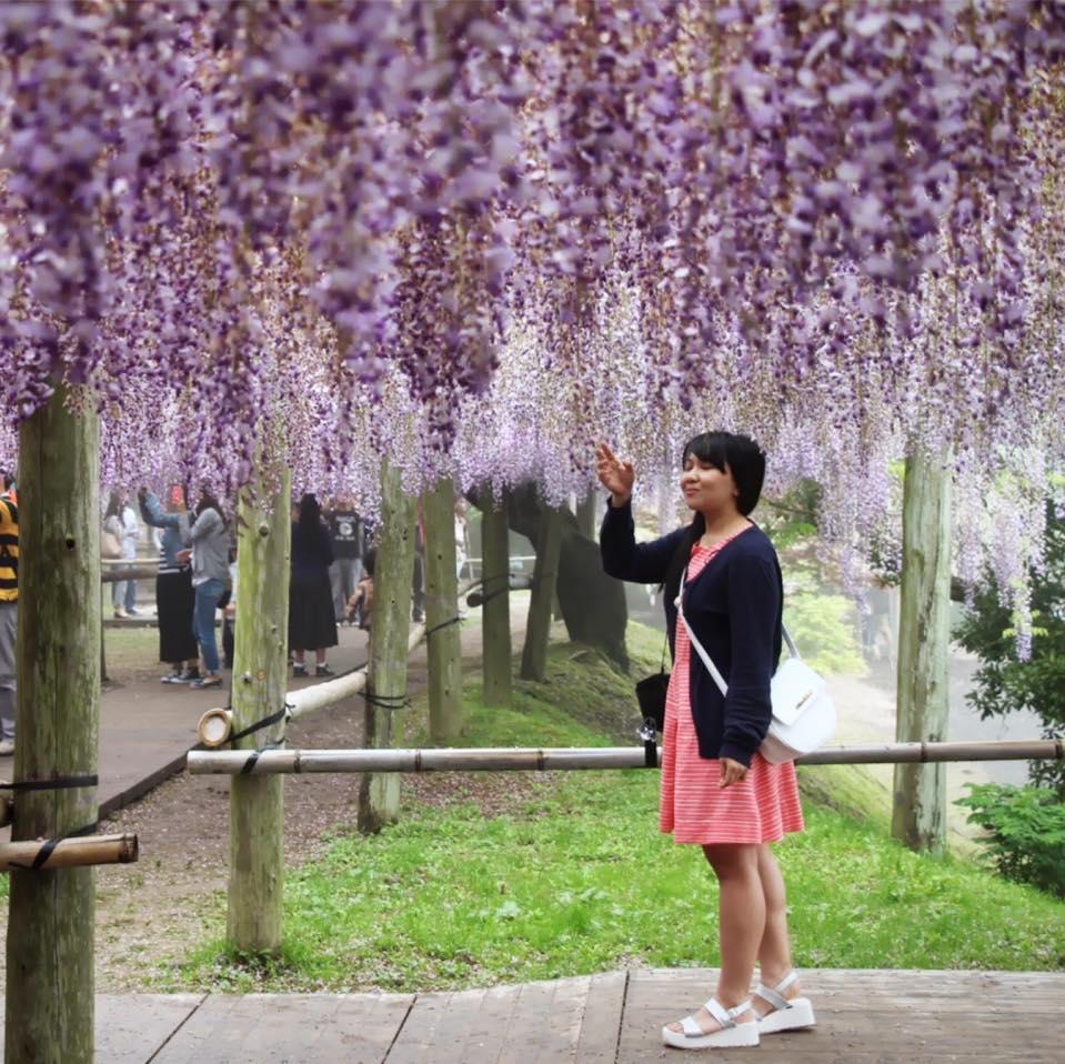 Live In Japan Travel Blogger